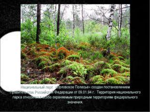 Национальный парк «Орловское Полесье» создан постановлением Правительства Рос