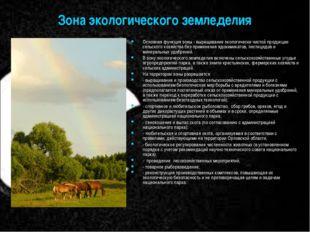 Зона экологического земледелия Основная функция зоны - выращивание экологичес