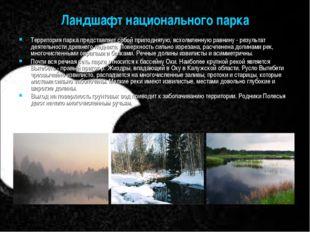 Ландшафт национального парка Территория парка представляет собой приподнятую,