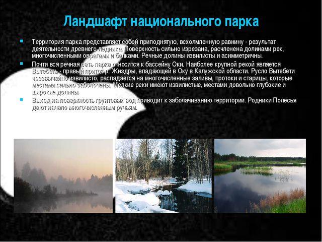 Ландшафт национального парка Территория парка представляет собой приподнятую,...