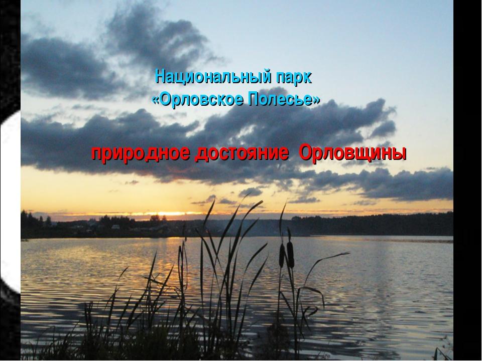 Национальный парк «Орловское Полесье» природное достояние Орловщины