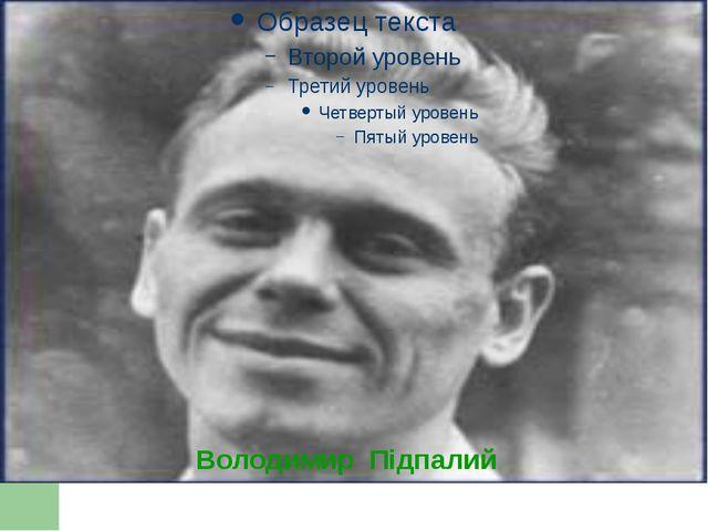Володимир Підпалий