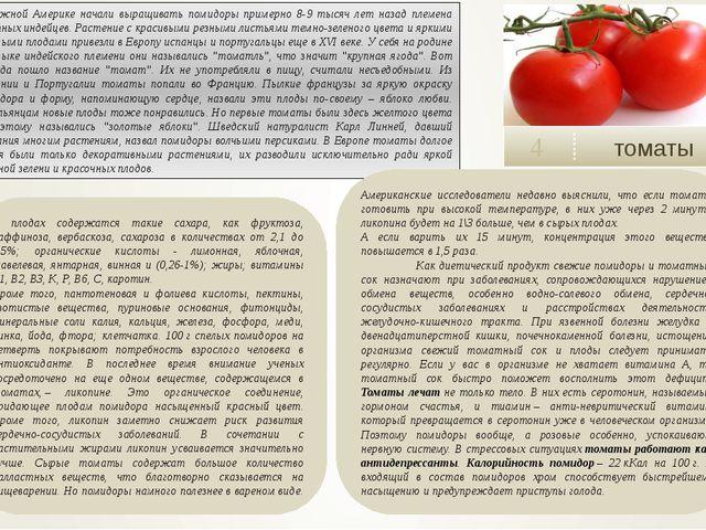 томаты 4 В плодах содержатся такие сахара, как фруктоза, раффиноза, вербаско...