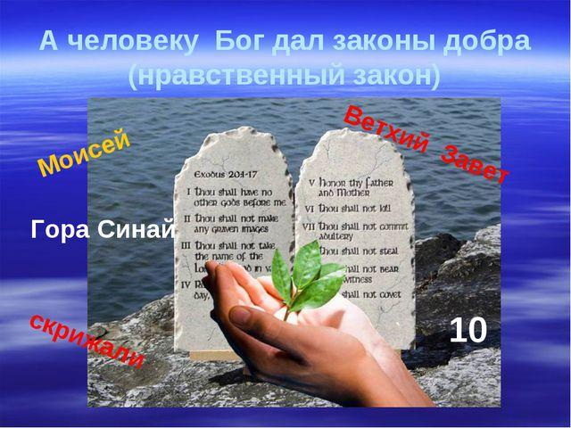 А человеку Бог дал законы добра (нравственный закон) Моисей Ветхий Завет 10 Г...