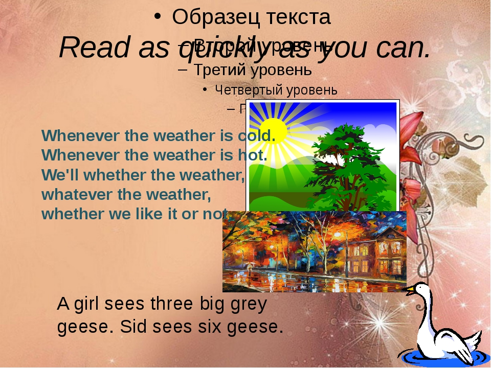 Read as quickly as you can. A girl sees three big grey geese. Sid sees six ge...
