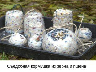 Съедобная кормушка из зерна и пшена