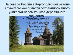 На севере России в Каргопольском районе Архангельской области сохранилось мн