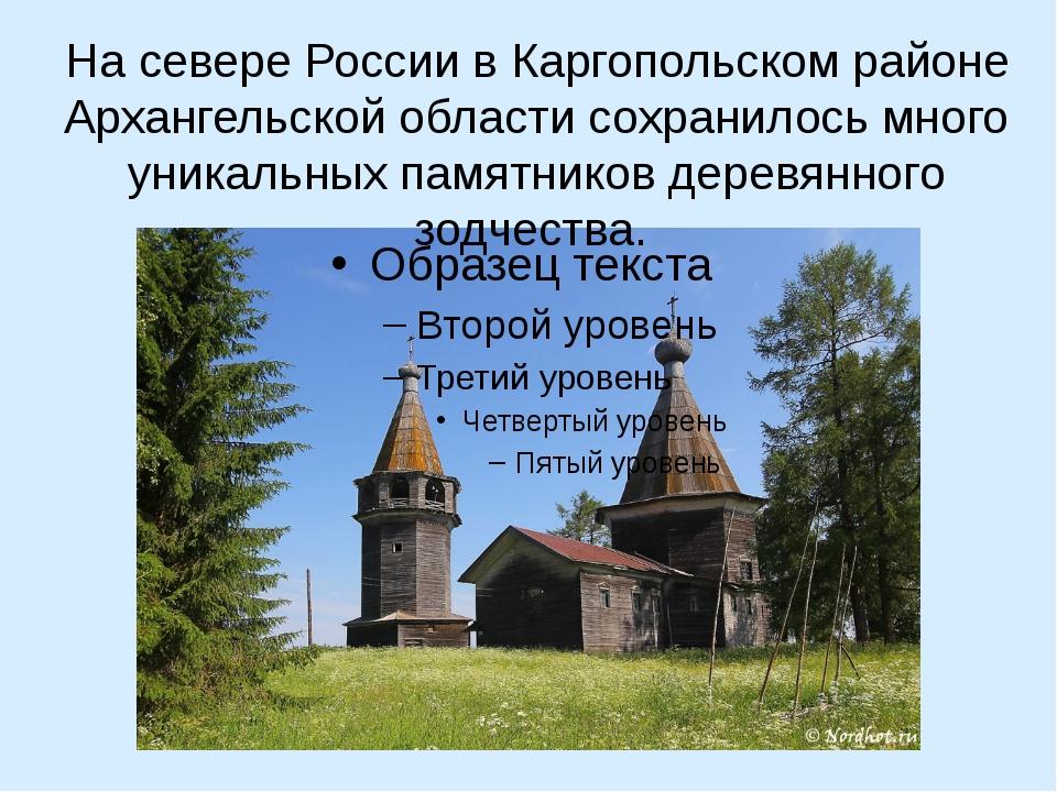 На севере России в Каргопольском районе Архангельской области сохранилось мн...