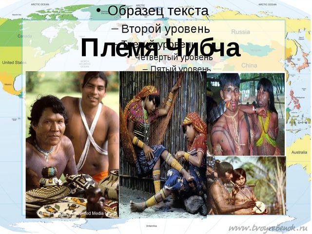 Племя Чибча