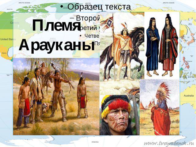 Племя Арауканы