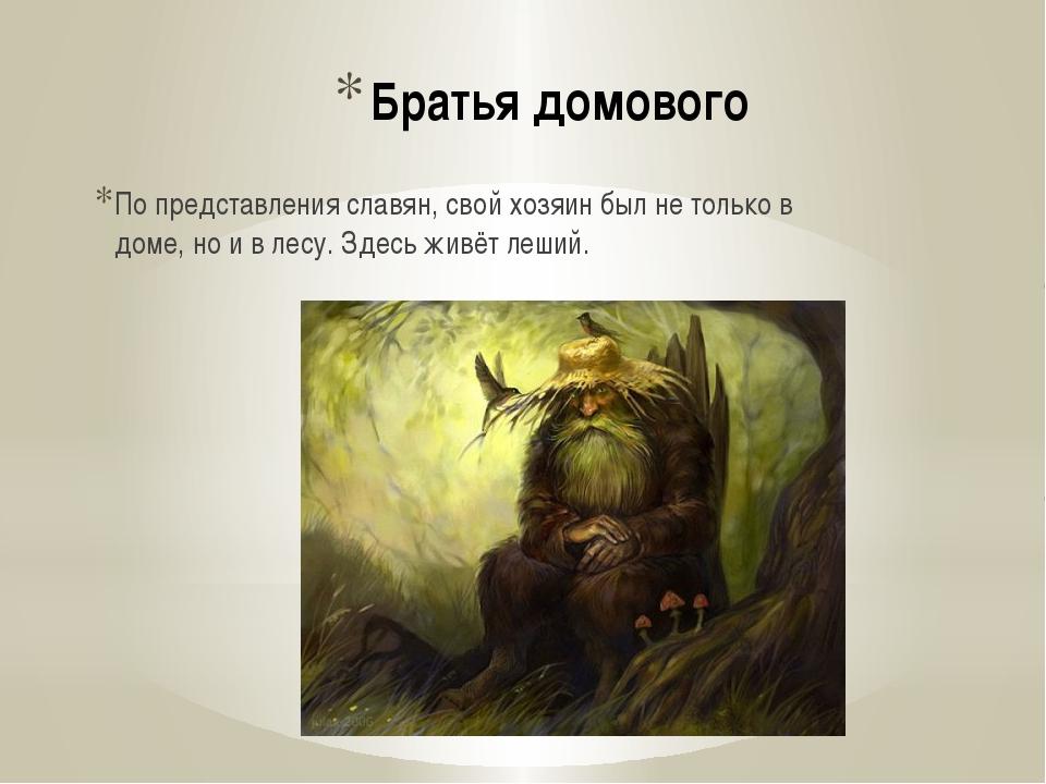 Братья домового По представления славян, свой хозяин был не только в доме, но...