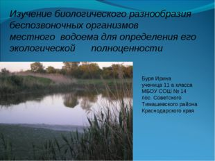 Буря Ирина ученица 11 а класса МБОУ СОШ № 14 пос. Советского Тимашевского ра