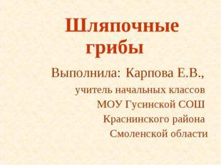 Шляпочные грибы Выполнила: Карпова Е.В., учитель начальных классов МОУ Гусин