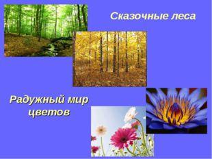 Сказочные леса Радужный мир цветов