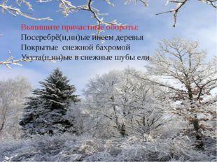 Выпишите причастные обороты: Посеребрё(н,нн)ые инеем деревья Покрытые снежной