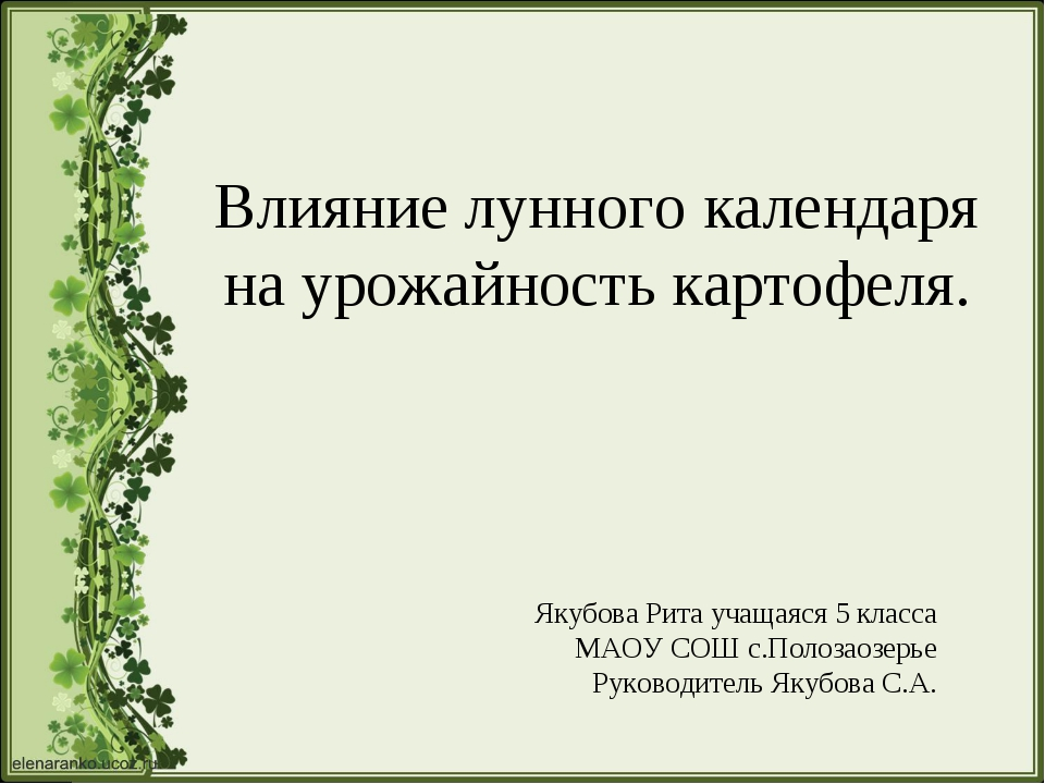 Влияние лунного календаря на урожайность картофеля. Якубова Рита учащаяся 5 к...
