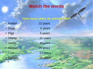 Match the words How many years do animals live? Rabbit 12 years Dogs 5 years