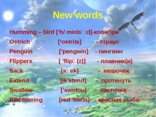 New words Humming – bird ['h/ minbә:d]-колибри Ostrich ['ostrits] - страус Pe