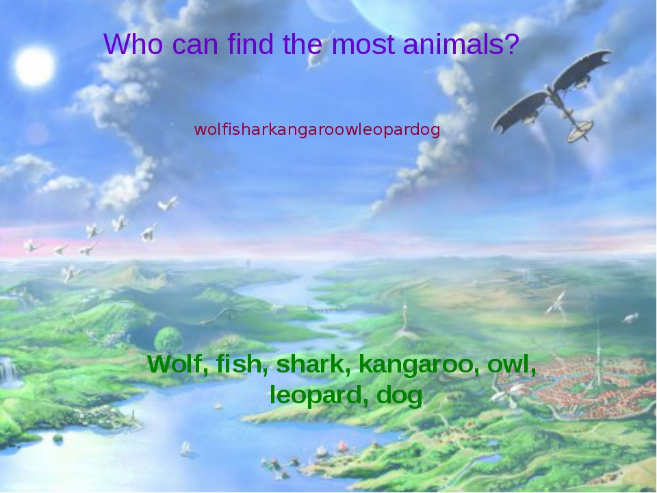 Who can find the most animals? wolfisharkangaroowleopardog Wolf, fish, shark...
