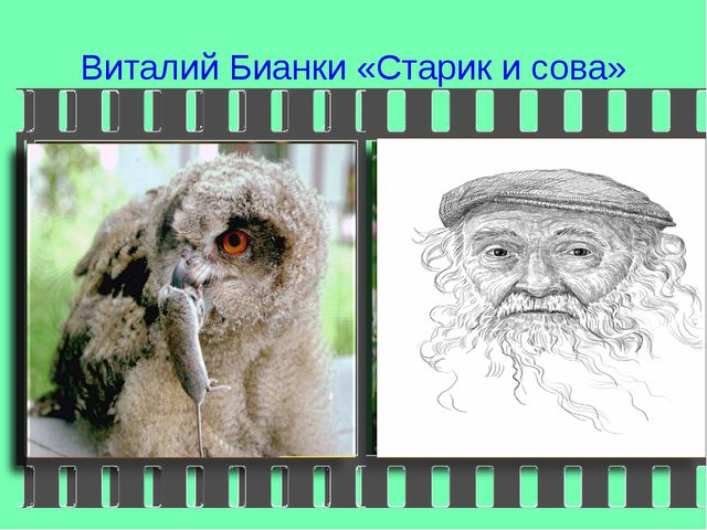 Виталий Бианки «Старик и сова»