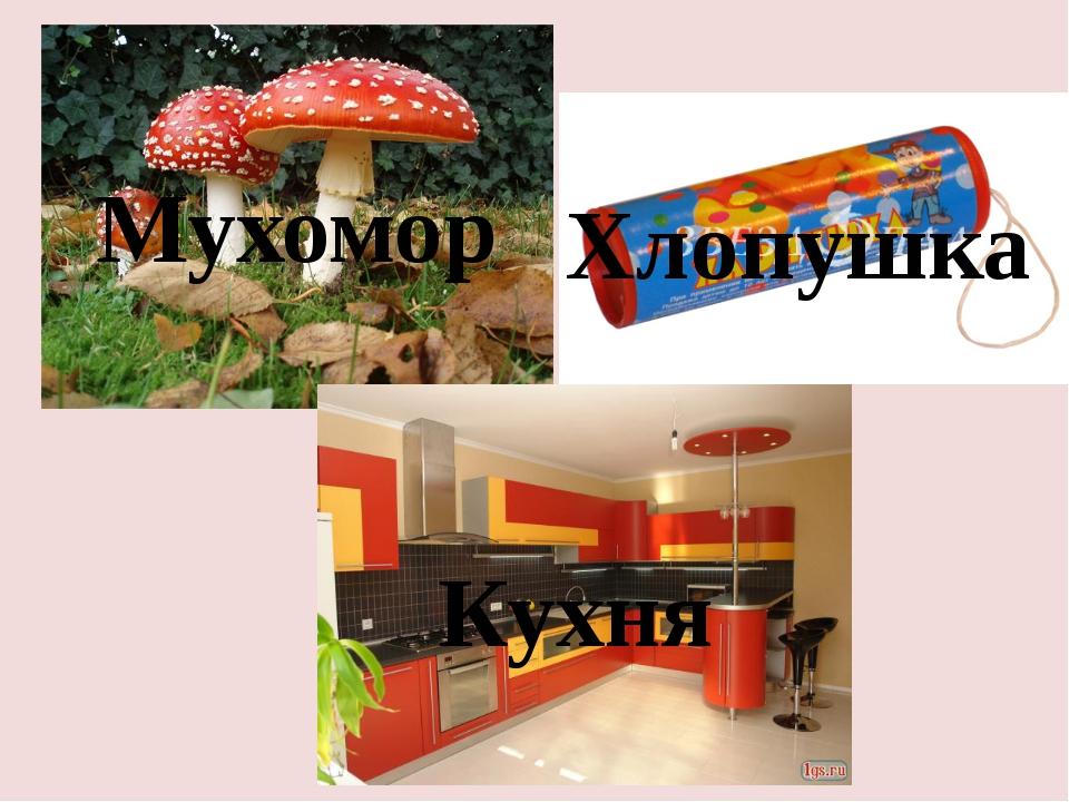 Мухомор Хлопушка Кухня