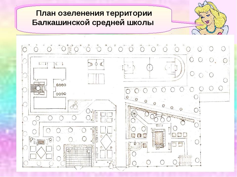 План озеленения территории Балкашинской средней школы