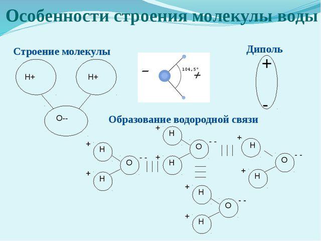 Особенности строения молекулы воды Н+ Н+ О-- Строение молекулы + - Диполь Обр...