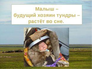 Малыш – будущий хозяин тундры – растёт во сне.