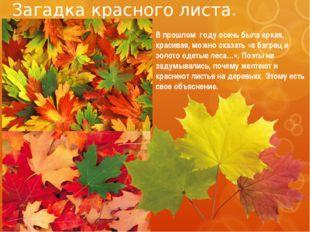 Загадка красного листа. В прошлом году осень была яркая, красивая, можно сказ