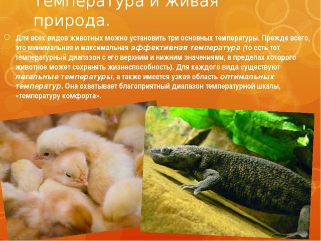 Температура и живая природа. Для всех видов животных можно установить три осн...