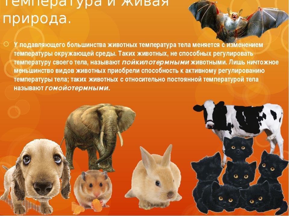 Температура и живая природа. У подавляющего большинства животных температура...