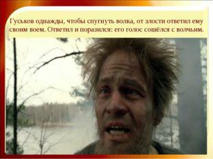 Гуськов однажды, чтобы спугнуть волка, от злости ответил ему своим воем. Отве
