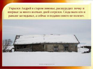 Укрылся Андрей в старом зимовье, расшурудил печку и впервые за много волчьих