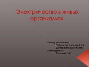 Работу выполнили: Чибиряков Ярослав 8 Б и Дегтев Валерий 10 класс Руководите