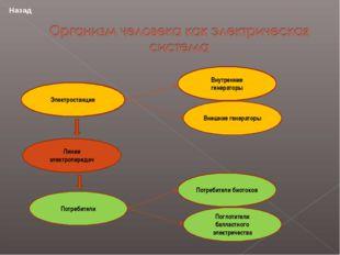 Электростанции Линии электропередач Потребители Потребители биотоков Поглотит