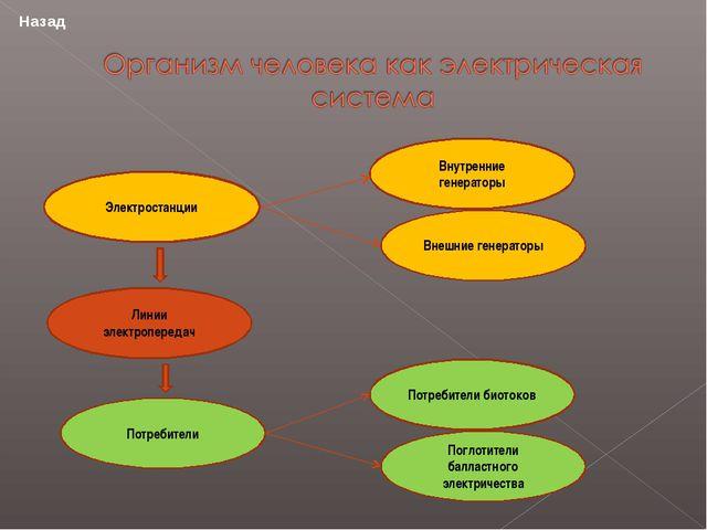 Электростанции Линии электропередач Потребители Потребители биотоков Поглотит...
