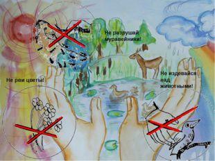 Не разрушай муравейники! Не рви цветы! Не издевайся над животными!