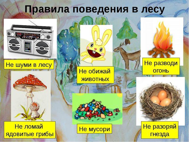 Правила поведения в лесу Не шуми в лесу Не обижай животных Не разводи огонь...