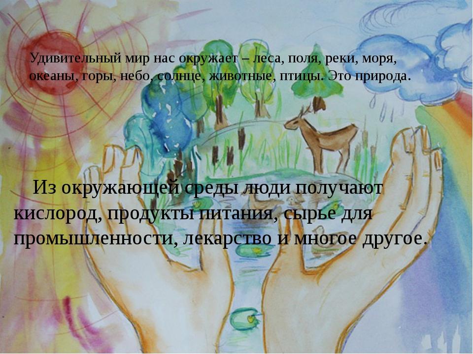 Удивительный мир нас окружает – леса, поля, реки, моря, океаны, горы, небо, с...