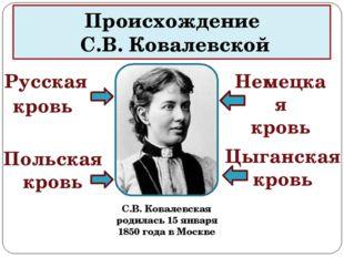 Происхождение С.В. Ковалевской С.В. Ковалевская родилась 15 января 1850 года