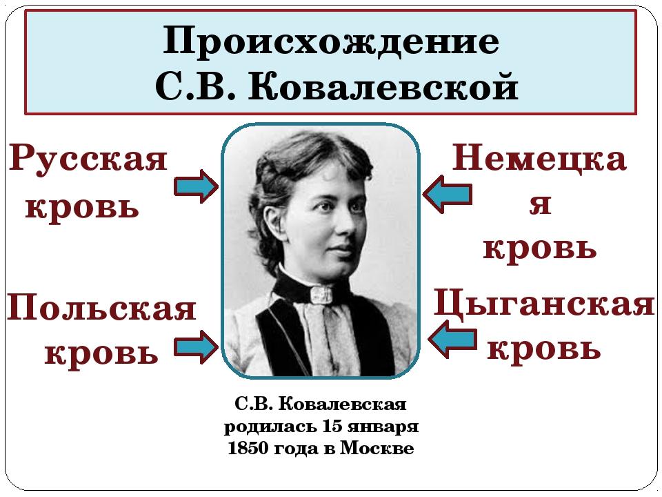 Происхождение С.В. Ковалевской С.В. Ковалевская родилась 15 января 1850 года...