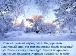 Красив зимний наряд леса. На деревьях искристый снег. На тонких ветках берёз