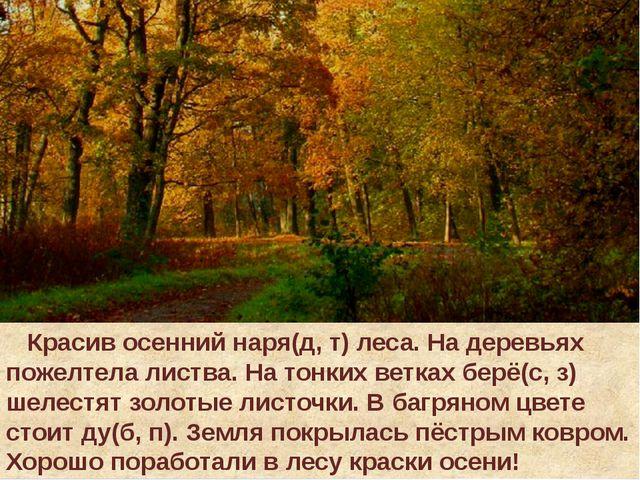 Красив осенний наря(д, т) леса. На деревьях пожелтела листва. На тонких ветк...