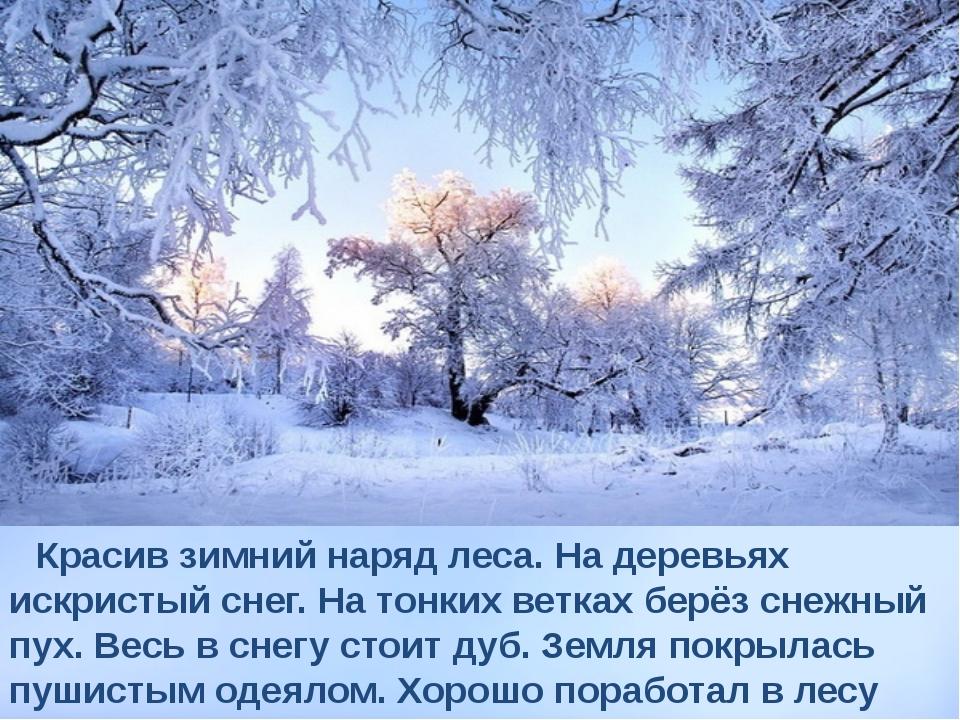 Красив зимний наряд леса. На деревьях искристый снег. На тонких ветках берёз...