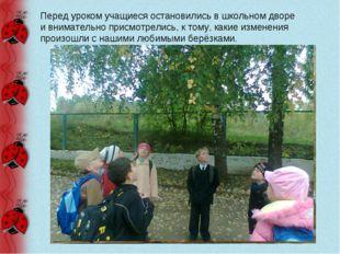 Перед уроком учащиеся остановились в школьном дворе и внимательно присмотрели
