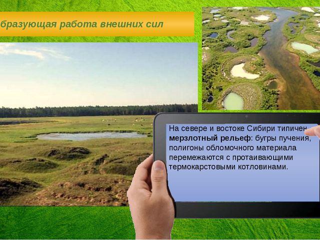 На севере и востоке Сибири типичен мерзлотный рельеф: бугры пучения, полигоны...