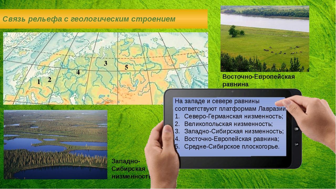 Западно-Сибирская низменность Связь рельефа с геологическим строением На запа...
