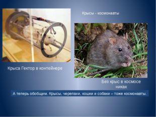 Без крыс в космосе никак Крыса Гектор в контейнере Крысы - космонавты А тепер