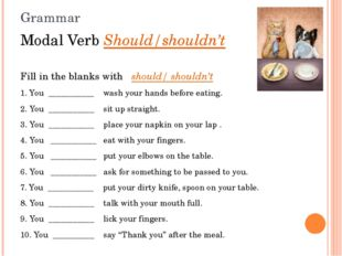 Grammar Modal Verb Should/shouldn't Fill in the blanks with should/ shouldn'
