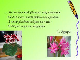 …Ты должен над цветами наклониться Не для того, чтоб рвать или срезать, А что